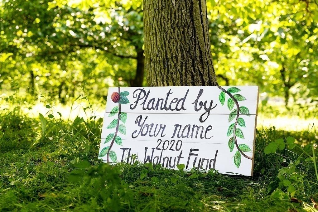 About - Walnut Fund
