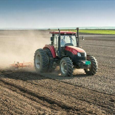 Harvesting is completely mechanized